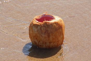 Lone coconut on the sand