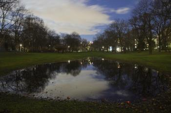 Long Exposure of Big Puddle at Night, Volkspark Wilmersdorf