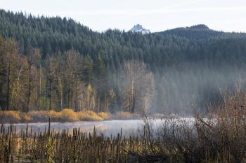 Lost Lake, Linn County, Oregon, Autumn Fog