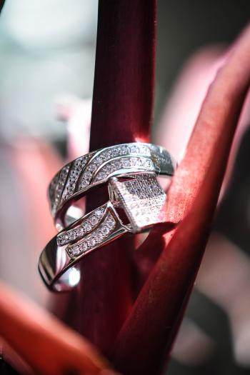 Macro Photography of Two Diamond Rings