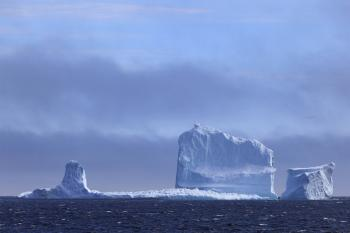 Majestic Icebergs