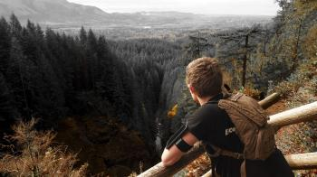 Man in Black Shirt and Brown Backpack Leaning on Brown Wooden Handrail Looking over Green Leaf Pine Trees and Creek