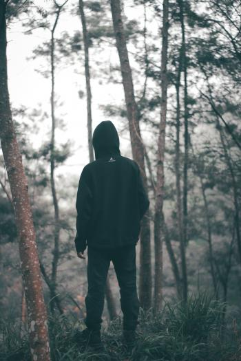 Man Wearing Black Hoodie With Black Pants Standing in the Middle of Forest