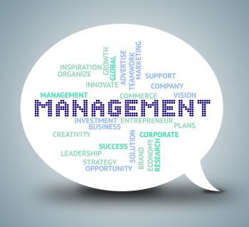 Management Bubble Shows Authority Planning 3d Illustration