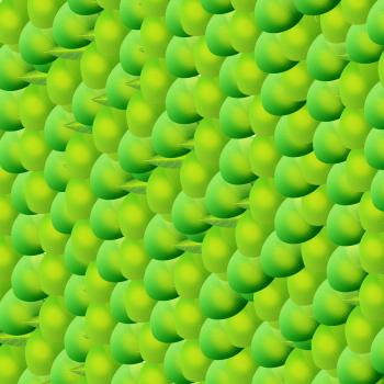 Mango Texture
