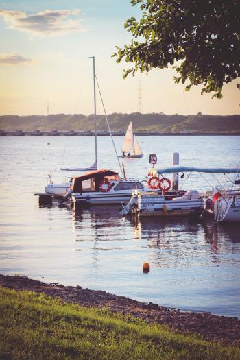 Marina by sunset