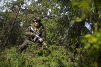 Marines Training in Forest