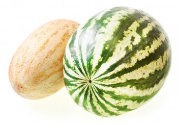 melon and watermelon