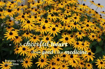 Merry Heart Like Medicine