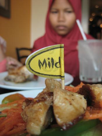 Mild food