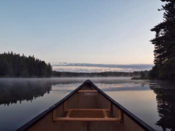 Mist on Pog Lake