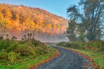 Misty Autumn McDade Trail - HDR