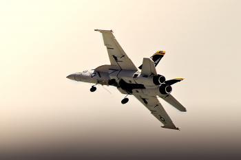 Model Jet - EDF F 18 Hornet