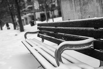 Monochrome Photography of Bench Covered with Snow