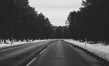 Monochrome Photography of Roadway During Winter
