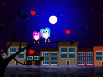 Moon Owls Represents Night Time And Apartment