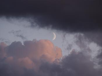Moon shades