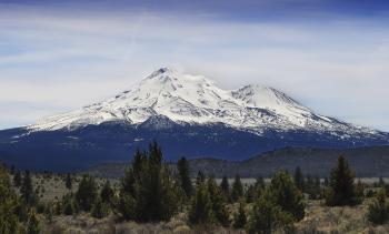 Mountain shasta