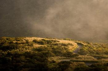 Mountainous Road
