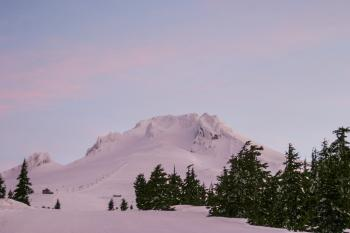 Mt. Hood, Oregon, Pink Morning Light