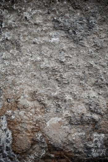 Muddy Soil Surface