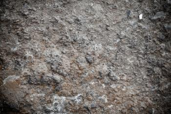 Muddy Soil Texture