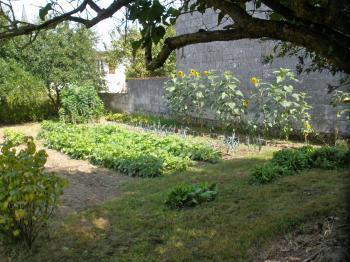 My grandma's vegetable garden