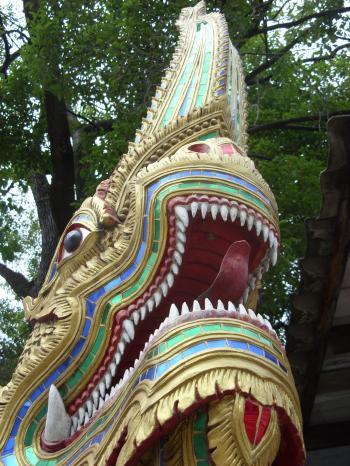 Naga Face and Teeth