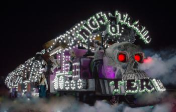 Night of the Train Photo