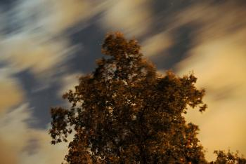 Night Wind Blowing