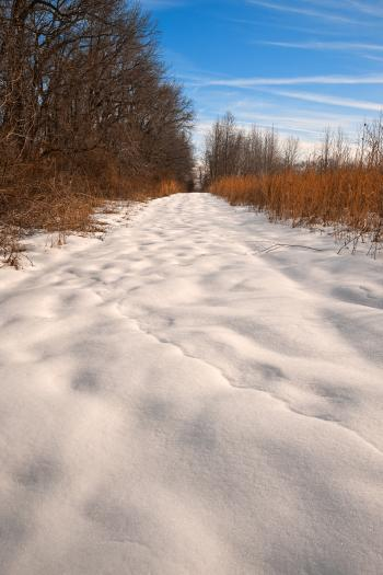 North Point Winter Trail - HDR