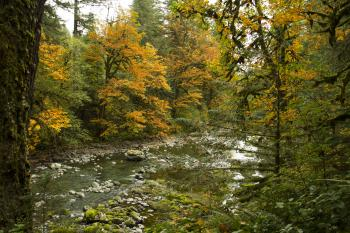 North Santiam River, Oregon