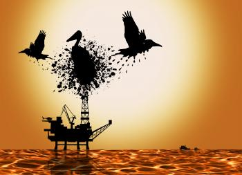Oil Spill Pollution