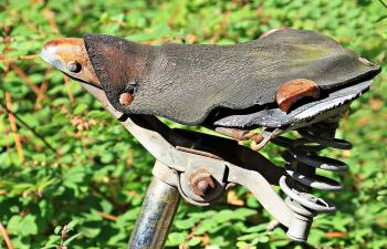 Old Bicycle Saddle