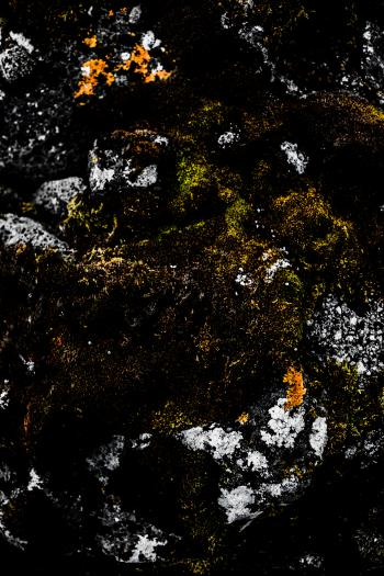 Old Stone and Moss Texture