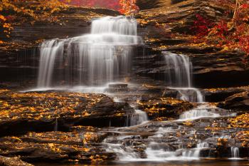 Onondaga Falls - Ruby Gold Autumn