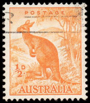 Orange Kangaroo Stamp