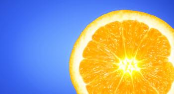 Orange Slice on Sky Blue Background