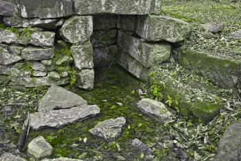 Organic Ruins - HDR