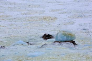 Pack ice along the coast