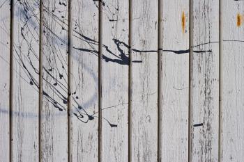 Paint Splatter Texture