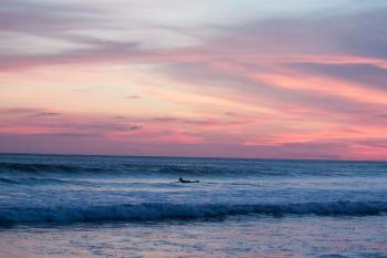 Panoramic Photography of Surfing Man at Sunset