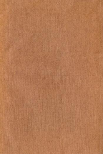 Paper Texture - Brown Canvas