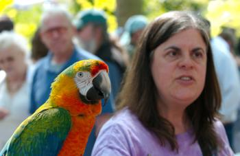 Parrot with owner 1