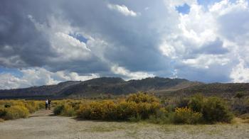 Path to Mono Lake at South Turfa