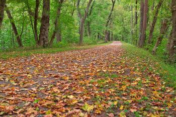 Paw Paw Trail - HDR