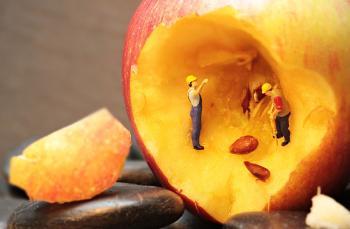 Peach Refurbishment