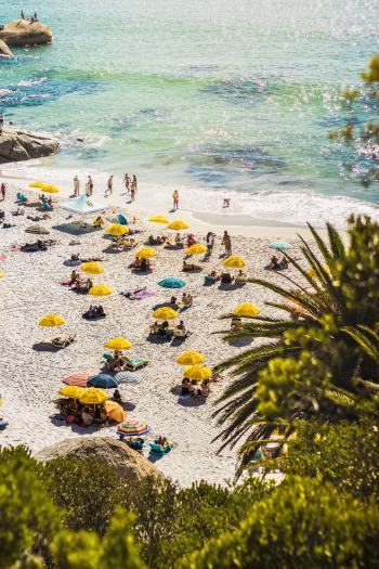 People Sunbathing and Swimming on Seashore