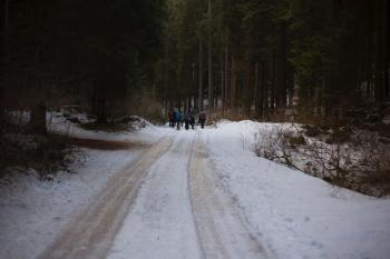 People Walking on Icy Road