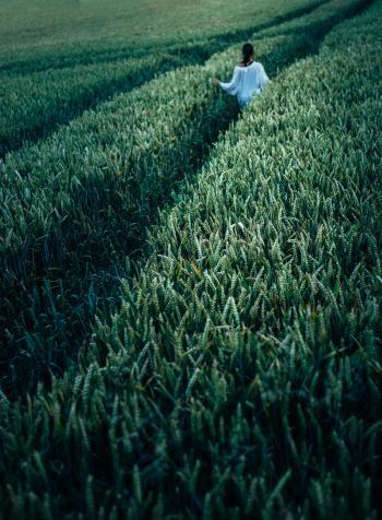 Person In The Field